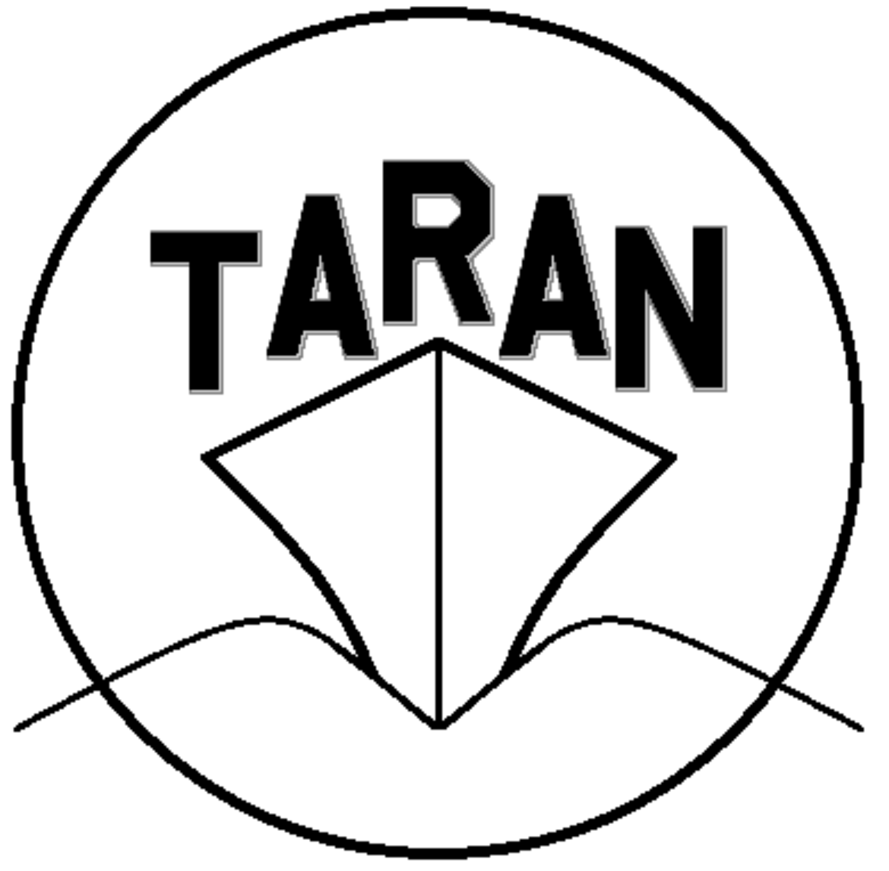Taran Amplifiers and Effects